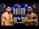 UFC 221 Rob Wilkinson vs Israel Adesanya