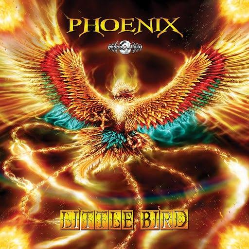 Phoenix альбом Little Bird