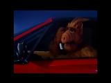 Alf Quote Season 1  Episode  10_Слет