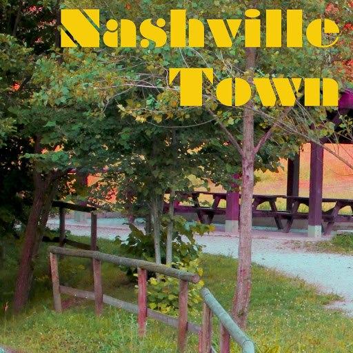 Anaconda альбом Nashville Town