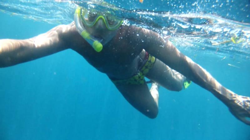 Плавание с огромными морскими черепахами - 2.