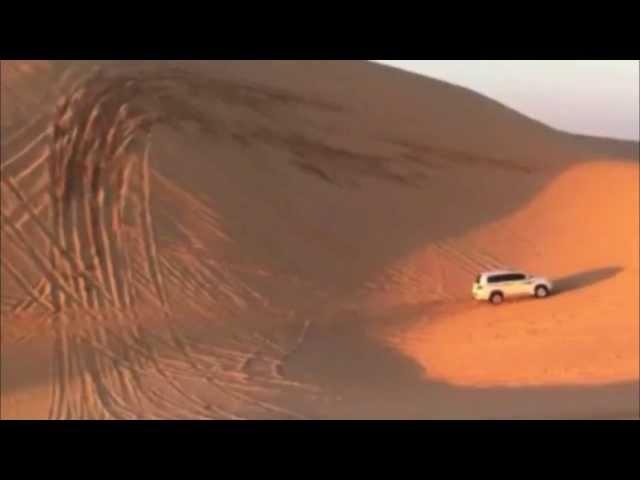 сафари в Абу Даби (ОАЭ)
