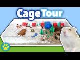 Hamster Snowy Hillside Resort Cage Tour