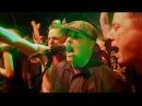 Dropkick Murphys UNTIL THE NEXT TIME (official video)