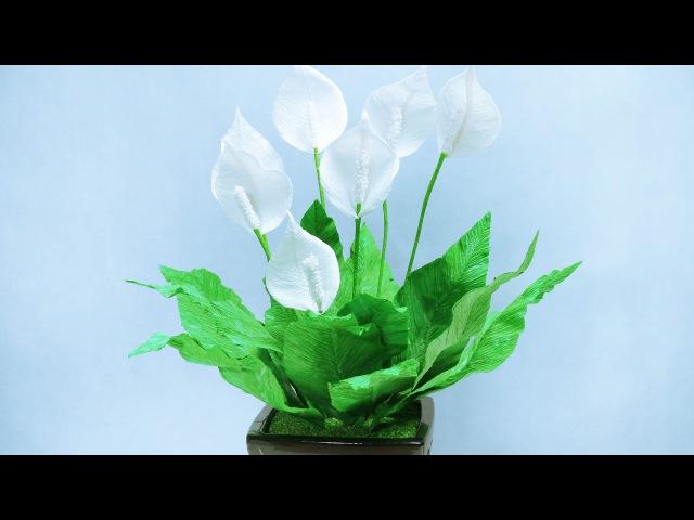 13: Làm hoa LAN Ý bằng giấy nhún - Didahaa.com: Chia sẻ link QC kiếm tiền