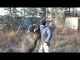 Медведь в шутку борется с человеком. Милота и новые претенденты на премию Дарвин...