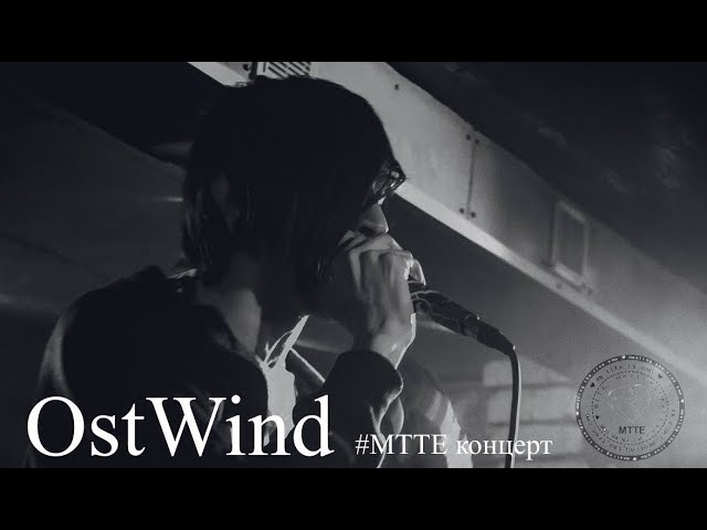 MTTE концерт | AMATORY - Эффект Бабочки (OstWind cover, Барвы. 19/01/18)