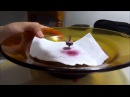 Гравитации нет! эксперимент в студии Анатолия Черняева