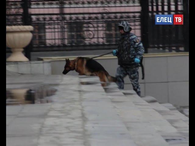 В центре Ельца выставлено оцепление, работают эсктренные службы