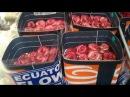 Дорогая плантация роз в Эквадоре. Обзор цветка.