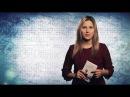Буки В поисках Одри Софи Кинселлы 10 08 2017