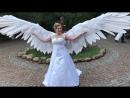 Animatronic wings | Механические крылья | Автоматические крылья на пульте