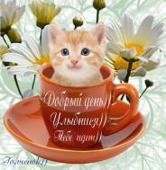 Доброе утро!Всем, кто проснулся, Всем, кто родным своим улыбнулся, Всем, кто готов заниматься делами, Или же просто общаться с друзьями! Пусть этот день будет лучше, чем прежний- Может, подарит кому-то надежду, Может желанье исполнит любое. Счастья, удачи, добра и покоя!