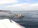 Wake surf wakeboard nature life fun enjoy