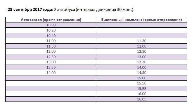 День микрорайона Текстильщик, Чайковский, 2017 год