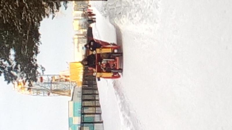зимняя прогулка на санях