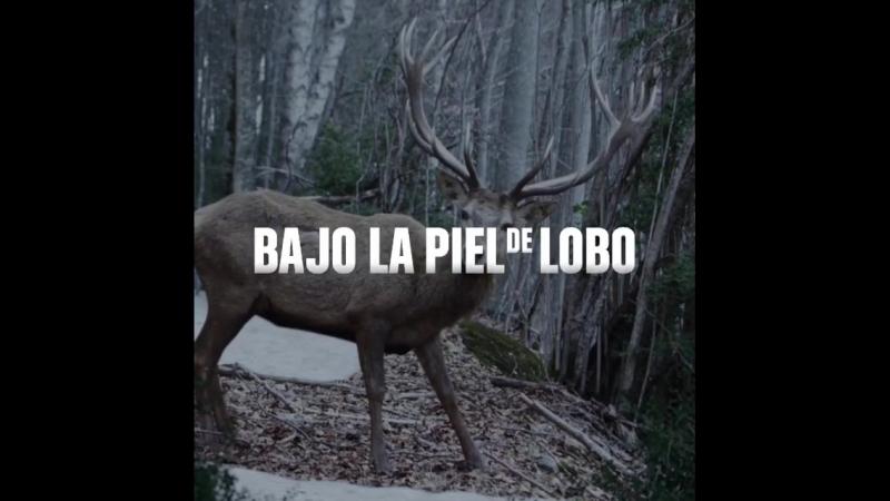 Bajo la piel de lobo cuenta con un protagonista de lujo: el paisaje asturiano y oscense.