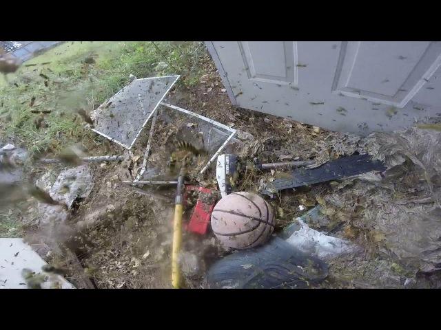 Huge Hornet Nest Removal