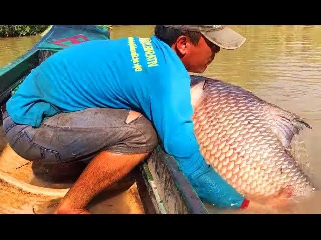 АФРИКАНСКИЙ КАРАСЬ УТОПИЛ ШОКОЛАДНОГО РЫБОЛОВА ! Вот это рыбалка 2018 ты не поверишь Реакция рыбы на