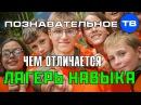 Чем отличается Лагерь Навыка Познавательное ТВ, Артём Войтенков