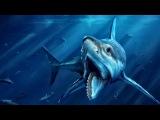 10 Самых страшных хищников, живших на нашей планете
