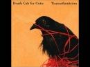Death cab for cutie Transatlanticism lyrics