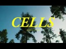 Young Dreams - Cells