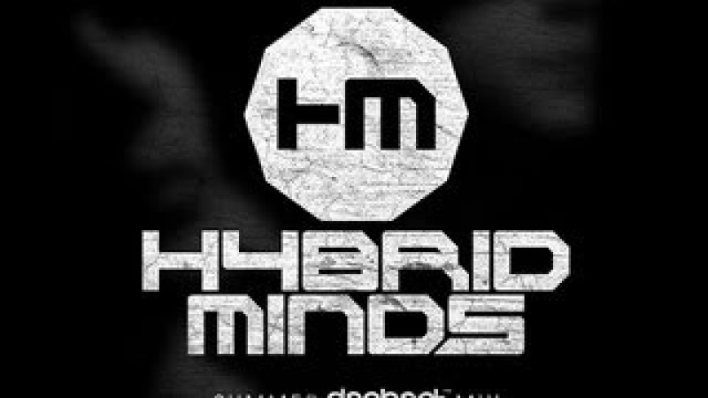 Hybrid Minds - Dephect Summer 2013 Mix (Liquid DnB)