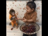 Two little cute chowhounds, Ann feed the monkey first, so lovely- Cutest monkey and baby video 2017
