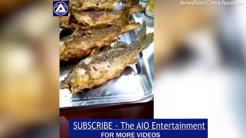 видео с ожившей после приготовления рыбой
