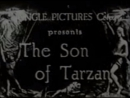 «Сын Тарзана» / «The Son of Tarzan» (1920)