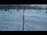 Выравнивание снега в  Сибири