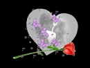 Красивые_клипы_о_Любви_самые_лучшие_песни_2013_года_про_Любовь_Я_тебя_Люблю_medi