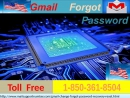 I found a freest way to use Gmail optimally is the Gmail Forgot Password: 1-850-361-8504 ?