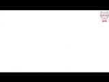 wats_zapp video
