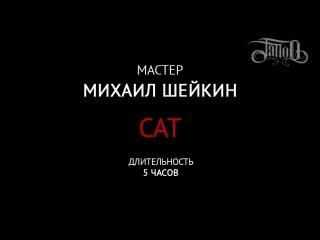 CAT by Mihail Sheikin