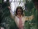 09-—-«ведьмаречка»-песня-из-фильма-«чародеи»-1982-rolic-scscscrp