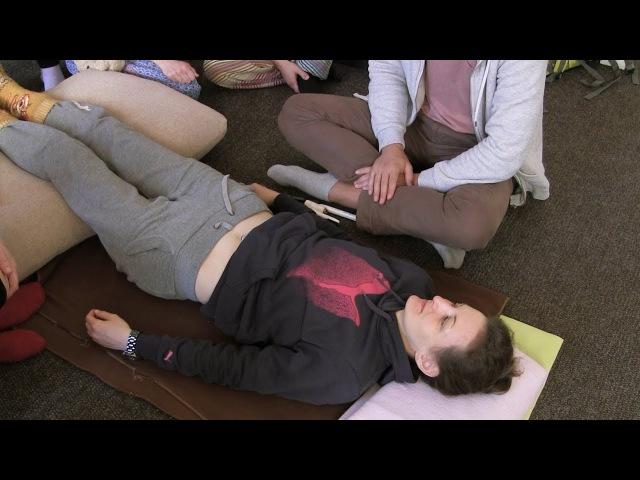 Висцеральная терапия - 1. Внутренние органы верхней части живота.*