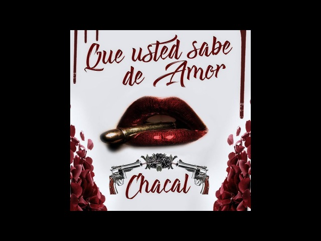 Chacal Que Usted Sabe De Amor Video Oficial