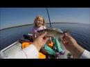Рыбалка на щуку щуки ЩУКА и судак лучшая блесна сезона 2017 Аргази