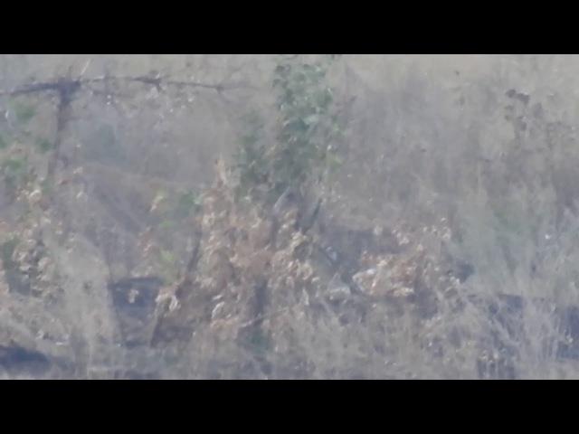 Снайпер ДНР подстрелил военнослужащего ВСУ на Спартаке