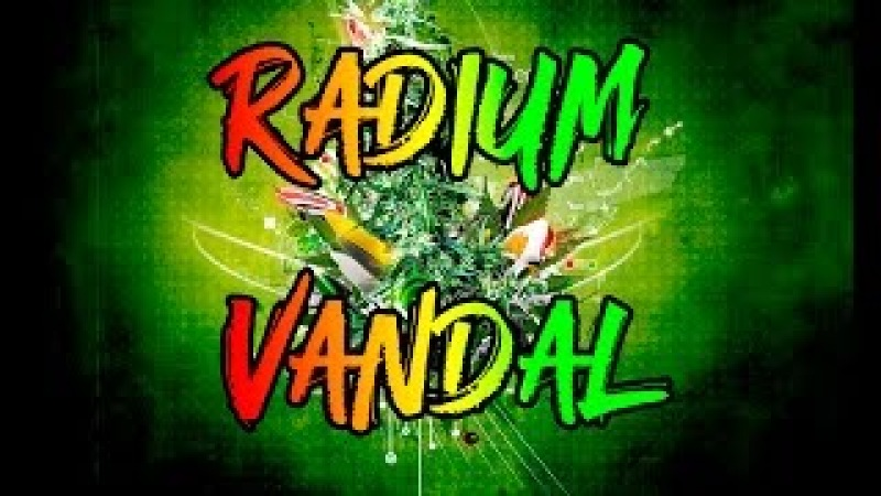 Radium Vandal - Fatty Fatty