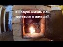 Переезд в деревню Сначала попробуйте жить в деревне видео с YouTube канала Деревенский Горожанин