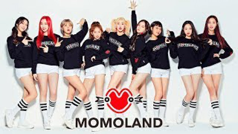 💥 [SPECIAL VIDEO] 💥 Momoland Great Opinion 📣 [ESP]📎[ENG SUB]