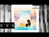D'N'B Redeyes - What She Wants (Lenzman Remix) Vandal