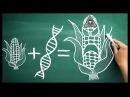 ГМО - средство спасения человечества от голода или сокращения численности населения?