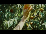 Keaton Henson - 10am Gare du Nord (рус.суб.) Call me by your name