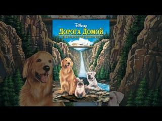 х/ф ДОРОГА ДОМОЙ: НЕВЕРОЯТНОЕ ПУТЕШЕСТВИЕ   Homeward Bound: The Incredible Journey (1993) HD   2018 - год собаки