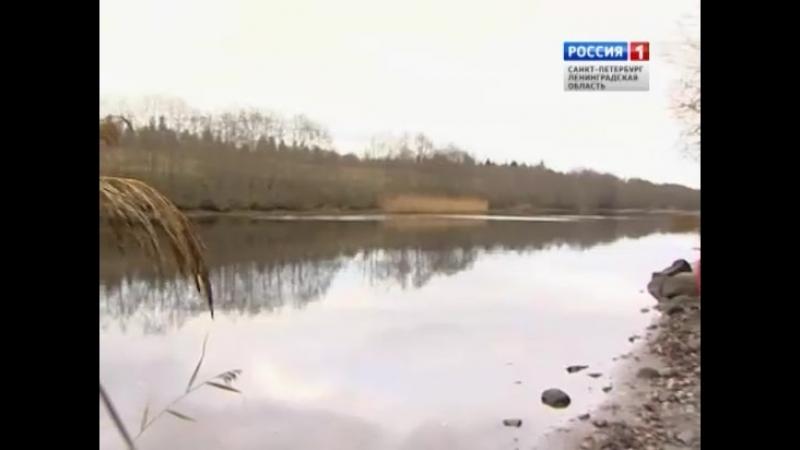 Заповедная область Прионежье россия1спб россия1 телеканалроссия