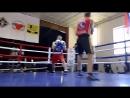 Боксёрские поединки на Финале Лиги бокса Росси, который проходит сейчас в Воронеже